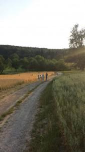 Alpaka Touren Heidelberg